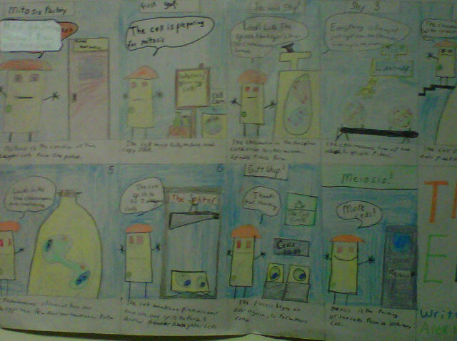 6th Grade Teacher Makes Science Fun with Cell Process Cartoons (3/3)